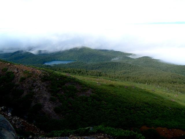 080828雌阿寒岳登りからオンネトー 020.ajpg.jpg
