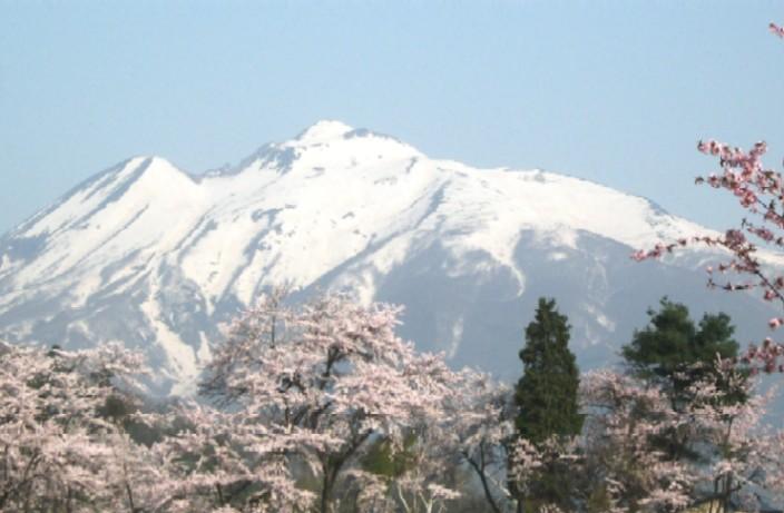 100502~05東北桜と岩木山 100a.jpg